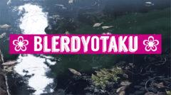BlerdyOtaku